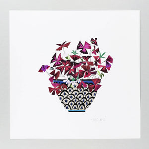 Brie Harrison - Oxalis In Bowl Giclee Print