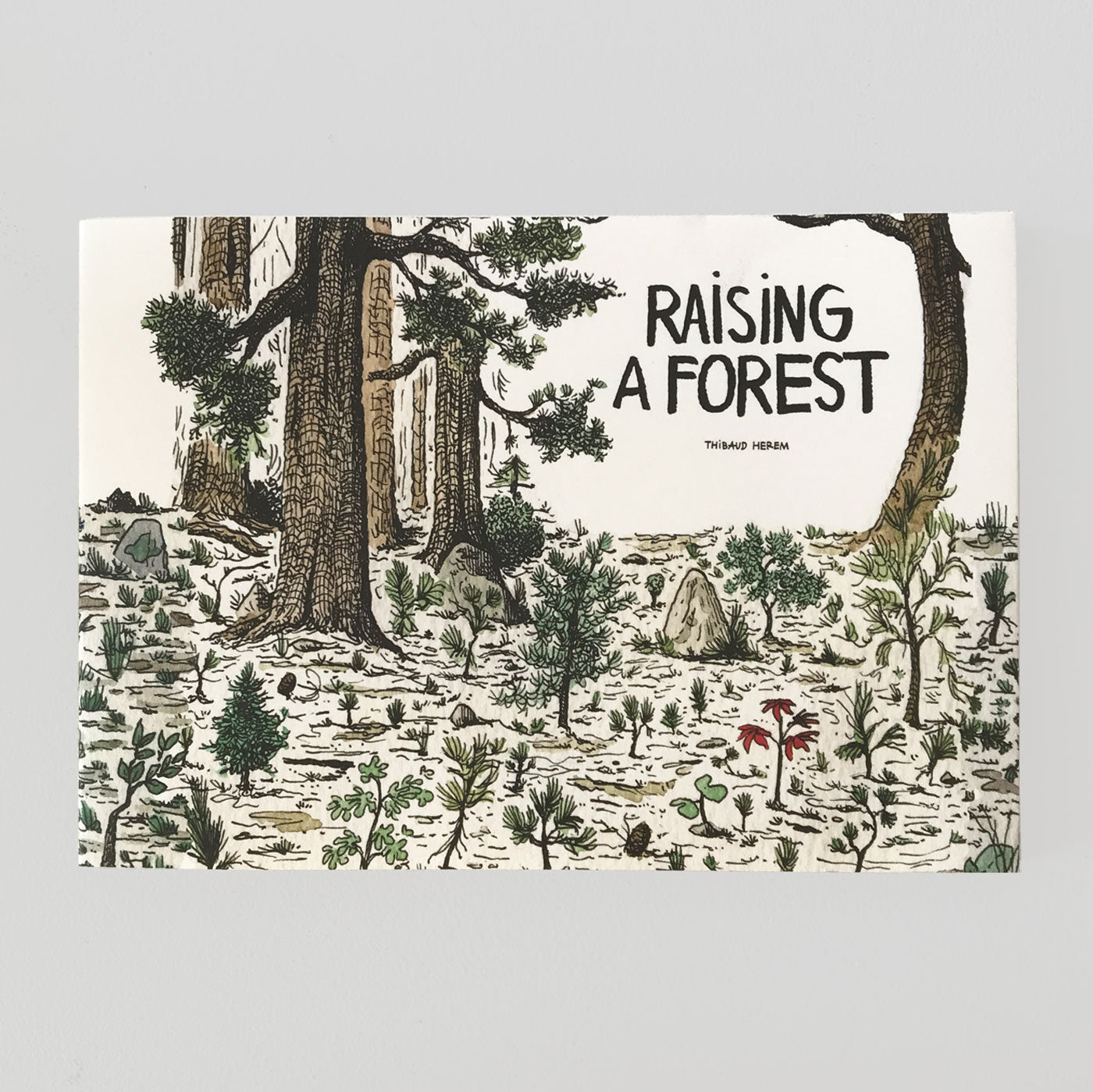 Raising a Forest - Thibaud Herem