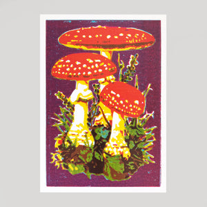 Ben Denning - Mushrooms - Colours May Vary