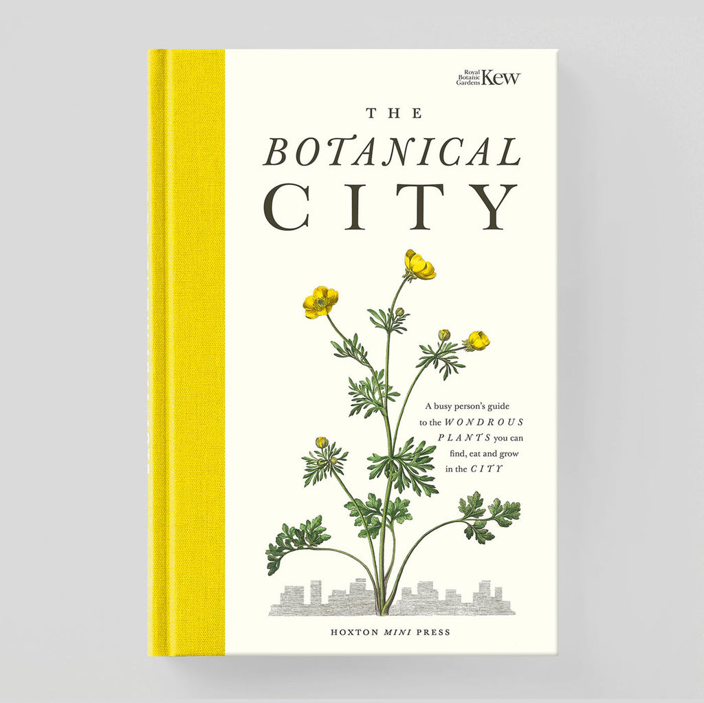 The Botanical City | Helena Dove & Harry Ades | Hoxton Mini Press | Colours May Vary