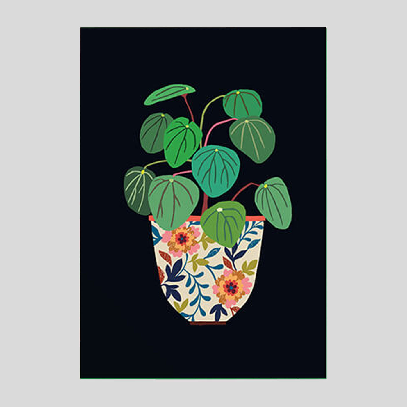 Brie Harrison - Pilea Card - Colours May Vary
