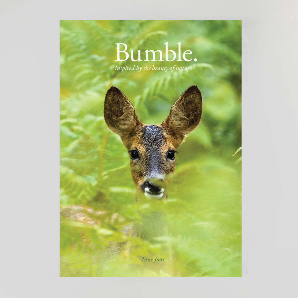 xBumble Magazine - Issue 4 - Colours May Vary