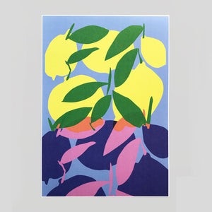 Lottie Hall | Citrus and Plum A3 Print | Colours May Vary