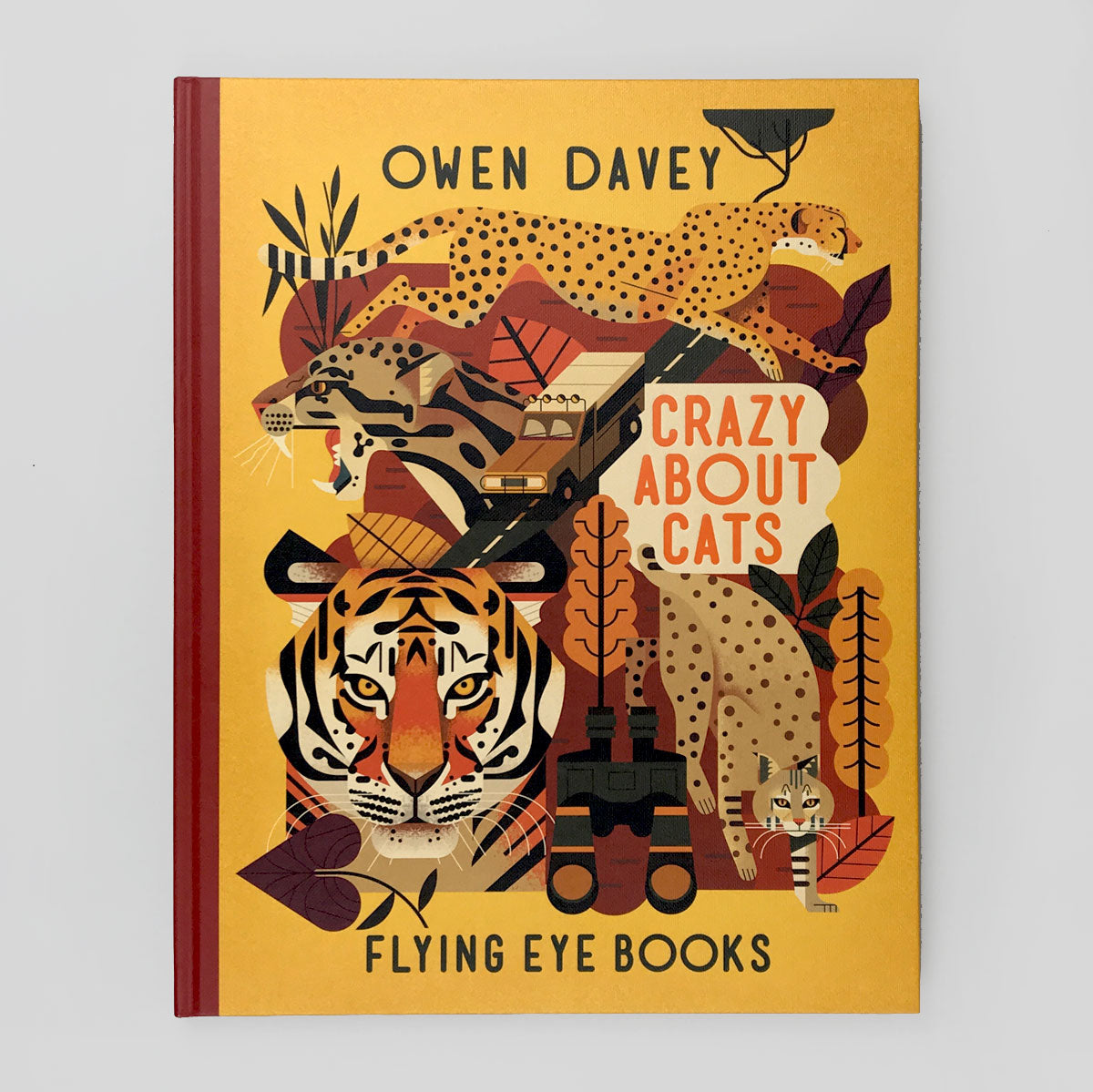 Crazy About Cats by Owen Davey