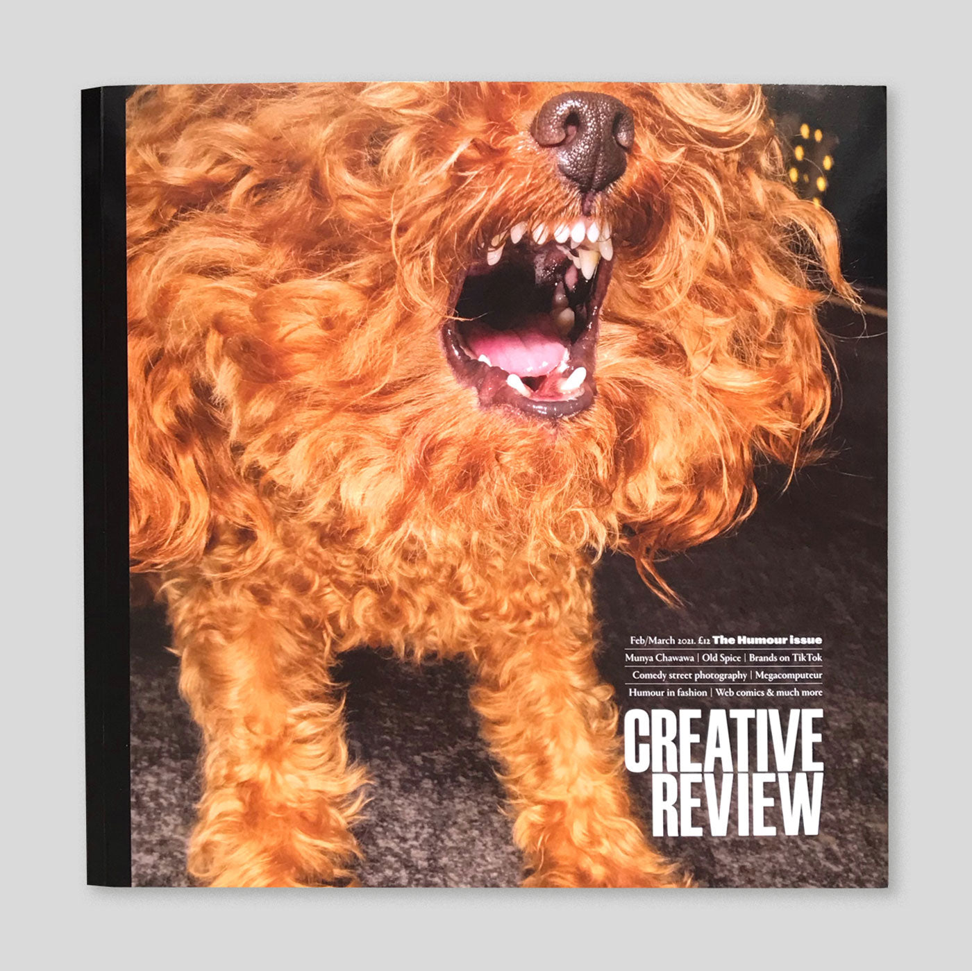 Creative Review | Feb-Mar 2021 | The Humour Issue | Colours May Vary