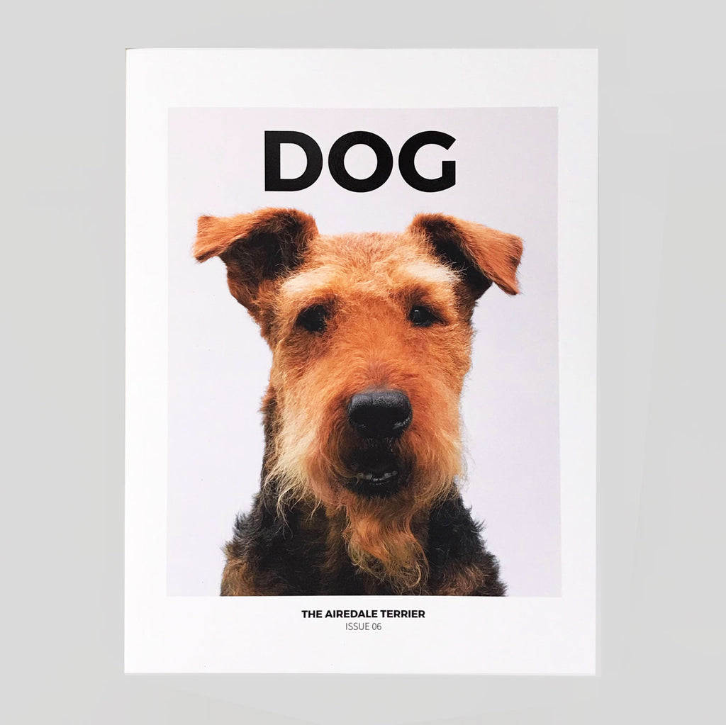 Dog Magazine #6 'The Airedale Terrier' - Colours May Vary