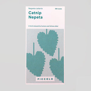 Piccolo Seeds - Catnip 'Nepeta' - Colours May Vary