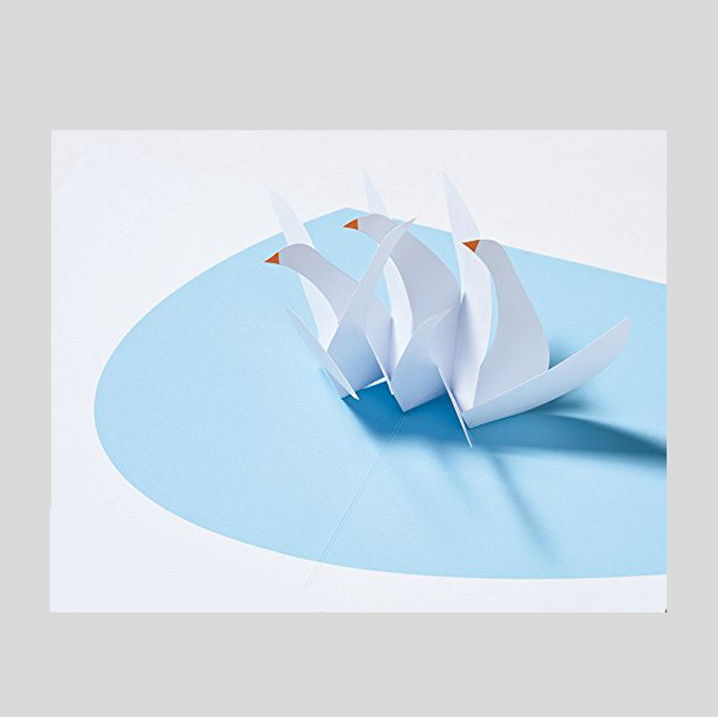 More Designs of Paper Folding For POP-UP.