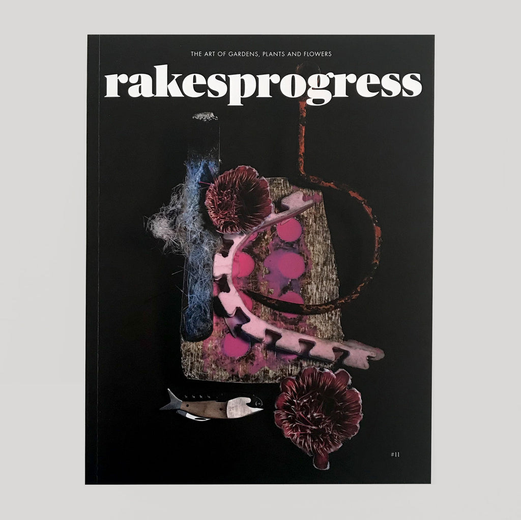Rakes Progress #8