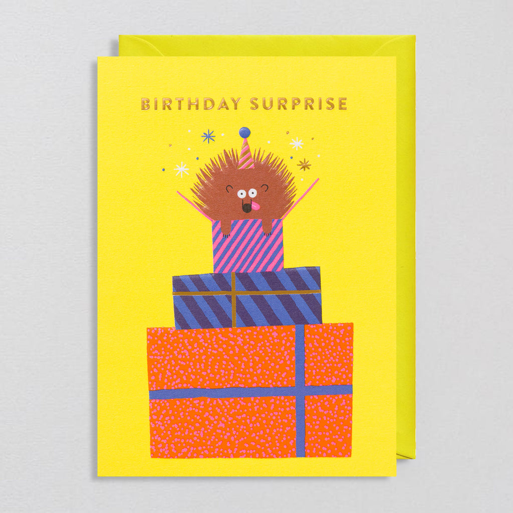 Rob Hodgson for Lagom  - Birthday Surprise Card - Colours May Vary
