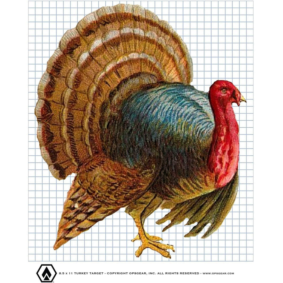 photo relating to Printable Turkey Target named Free of charge Ambitions - OPSGEAR (DP Creations LLC)