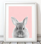 Bunny Art Print - Rock Salt Prints Inc