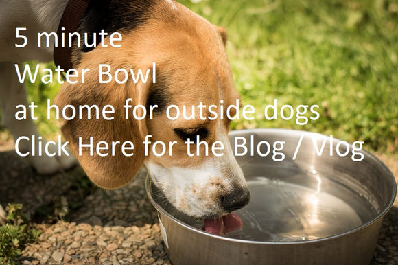 DIY Water Bowl by Dogboy Info ( Full Tutorial) Blog Vlog Dogs
