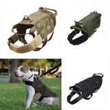 american bull pit bull harness weight conditioning