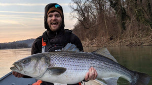 Basics For Saltwater Striped Bass Fishing With Light Tackle