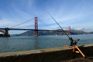 What Are the Best Fishing Spots in the Bay Area?