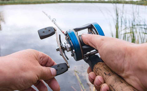 What Are the Best Fishing Websites?