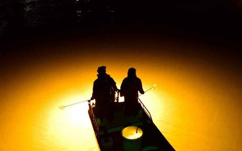 Angler's Guide to Fishing Lights