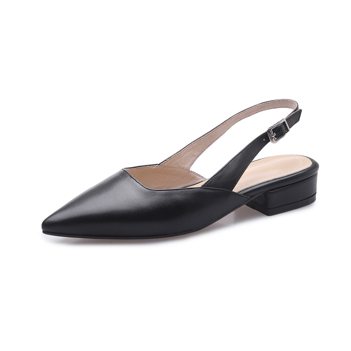 Leather Pointed Toe Slingbacks With Low Heel