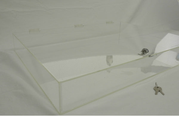 3 inch tall display case