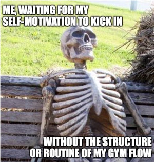 meme skeleton on bench waiting for motivation to work out without gym
