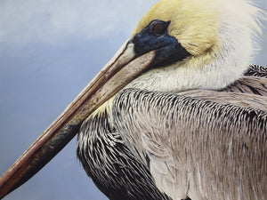 "Puzzle ""Brown Pelican"""