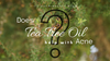 Does Tea Tree Oil Help with Acne? Read this First