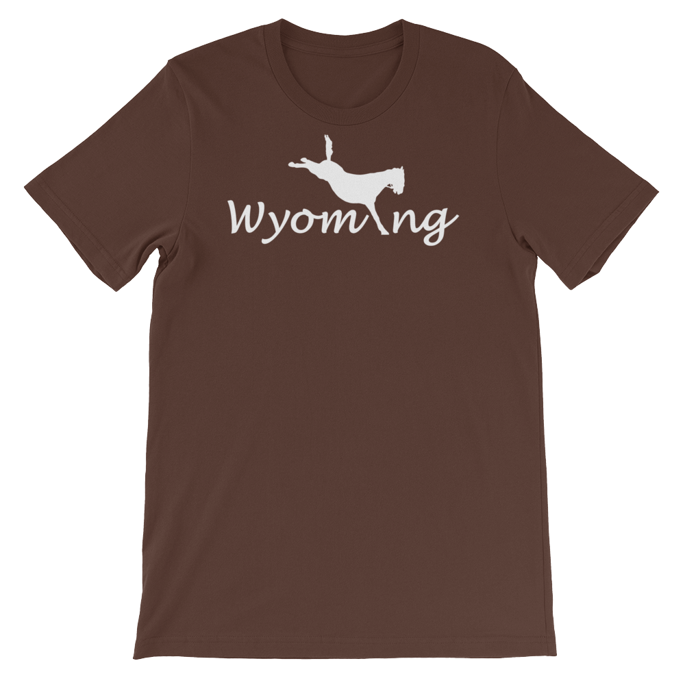 Wyom-i-ng Bucking Bronco - Wyoming, USA