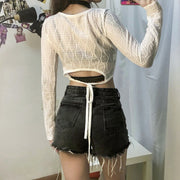 Long Sleeve Hollow Out Mesh Crop Top