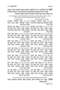 ArtScroll Machzor Hebrew Only - Ashkenaz with English Instructions - Alligator Leather- 5 volume Full Set - Full Size