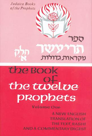 PROPHETS-NEVIIM: TWELVE PROPHETS, VOL. ONE