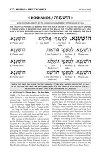 Schottenstein  Interlinear  Machzor Succos  -Hebrew English - Ashkenaz- White  Leather