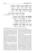Load image into Gallery viewer, Schottenstein Edition Interlinear Kinnos / Tishah B'av Siddur - Ashkenaz