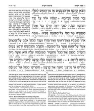 Load image into Gallery viewer, Schottenstein Ed Interlinear Chumash Vol 3: Vayikra / Leviticus