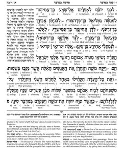 Schottenstein Ed Interlinear Chumash Vol 4: Bamidbar / Numbers