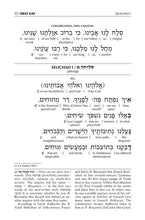 Load image into Gallery viewer, Schottenstein Interlinear Selichos for the 1st Night - Minhag Lita (Ashkenaz)