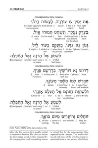 Schottenstein Edition Interlinear Selichos: Nusach Polin Sefard