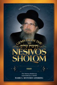 Gems from the Nesivos Shalom: Chanuka