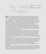 Load image into Gallery viewer, The Milstein Edition of the Later Prophets Set (4 vol.) [Pocket Size Set]