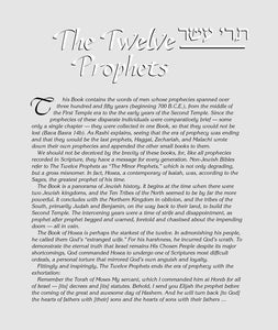 The Milstein Edition of the Later Prophets ( Tanach ) [Pocket Size Hardcover]