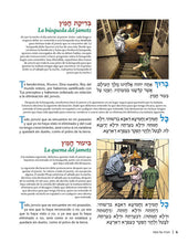 Load image into Gallery viewer, La Hagadá Ilustrada - Illustrated Haggadah (Spanish) - Softcover