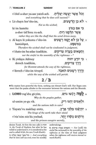 Tehillim: Transliterated Linear - Pocket Size (Softcover)