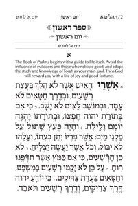 Large Type Tehillim / Psalms- hebrew- English- Softcover- Pocket Size (Small)