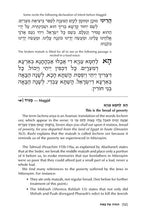 Load image into Gallery viewer, The Yetzias Mitzrayim Haggadah