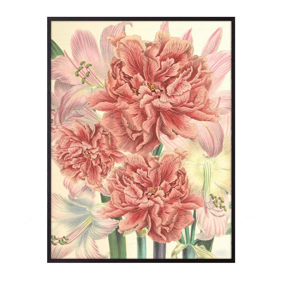 Vanilla Fly Peonies & Lilies (PSC199) Poster