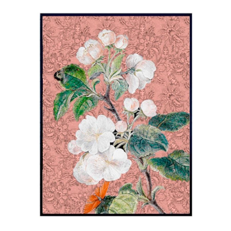 Vanilla Fly Rose Apple Blossom (PSC186) Poster