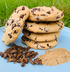 Choc Chip Cricket Powder Cookies