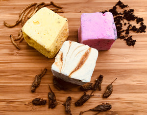 Edible Insect Marshmallows 9 pack