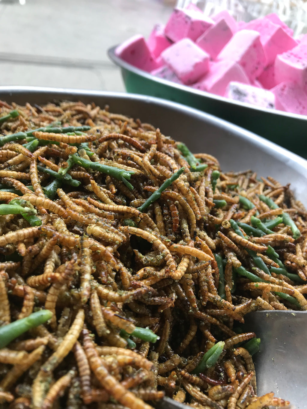[Quality Edible Insect Products] - Edible Bug Shop Australia