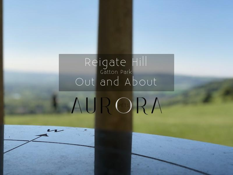 Reigate Hill and Gatton Park, Surrey